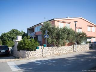 2 bedroom Apartment with Internet Access in Povljana - Povljana vacation rentals