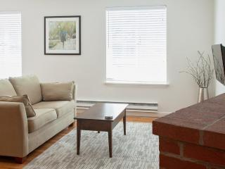 Gorgeous Condo with Internet Access and Wireless Internet - Boston vacation rentals