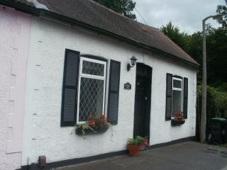Charming 2 bedroom Cottage in Buckhurst Hill - Buckhurst Hill vacation rentals