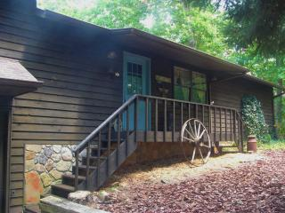 Cozy House with Deck and Internet Access - Young Harris vacation rentals