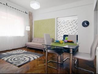 New Flat In The Heart Of City - Bucharest vacation rentals