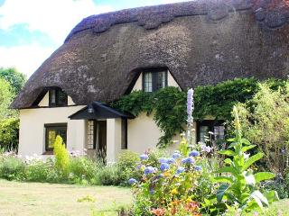 LONG HOUSE COTTAGE, Grade II listed, thatched, character, woodburner, pet-friendly, near Wimborne, Ref 920454 - Wimborne vacation rentals
