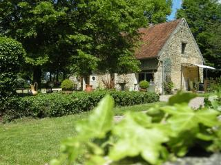Jolie Maison/Gîte en Bourgogne sur 6 hectares - Donzy vacation rentals