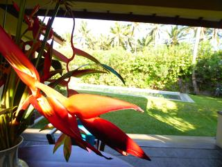 1  min. walk to the beach, fully staffed including a chef, private pool, private - Koggala vacation rentals