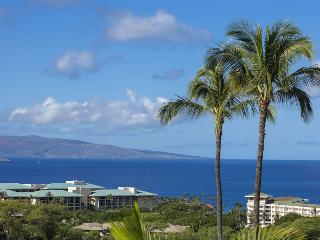Nice Condo with Private Outdoor Pool and Wireless Internet - Wailea vacation rentals