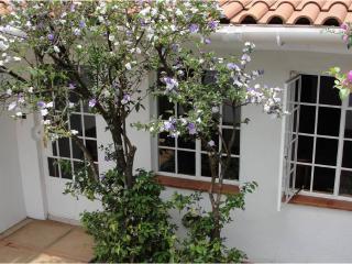 Perfect 1 bedroom Cottage in Nairobi with Internet Access - Nairobi vacation rentals