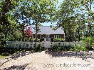 CHARMING CAPE IN ISLAND GROVE THAT IS TRUE VINEYARD! - Edgartown vacation rentals