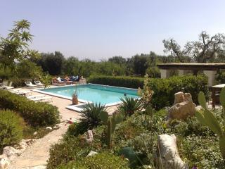 Hill top with pool, superb views great amenities - Ceglie Messapica vacation rentals