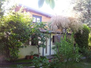 Michael´s Nest 4 max 6 - Vienna vacation rentals