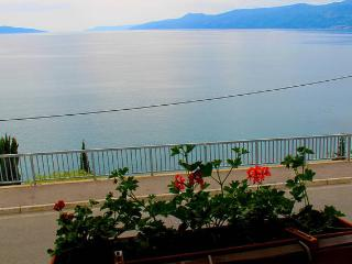Big apartment by the sea , Rijeka, Kvarner - Rijeka vacation rentals