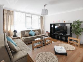 CLARIS | Spacious 3 Bed Apartment in Sisli - Istanbul vacation rentals