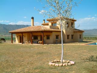 Traditional 5 bedroomed Spanish Villa / farm house - Pinoso vacation rentals