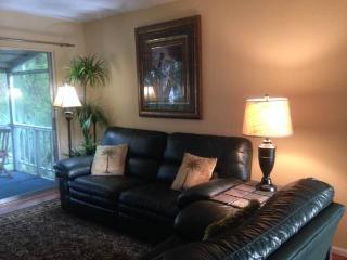2 Bedroom 55+ 3 months minimum - Sarasota vacation rentals