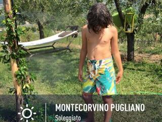 Nice Bed and Breakfast with Internet Access and Central Heating - Montecorvino Pugliano vacation rentals