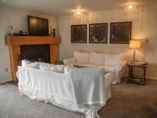 Desirable Bigfork Harbor Condo - Bigfork vacation rentals