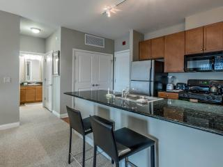 Bright 1 bedroom Apartment in Glenview with Internet Access - Glenview vacation rentals