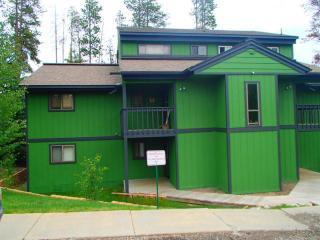Tall Pines Condo 2 Blocks to Winter Park - Winter Park vacation rentals
