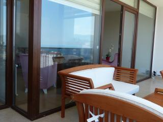 Nice Condo with Internet Access and Dishwasher - Trabzon vacation rentals
