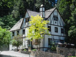 Bracken Fern Manor - Lilly - Lake Arrowhead vacation rentals
