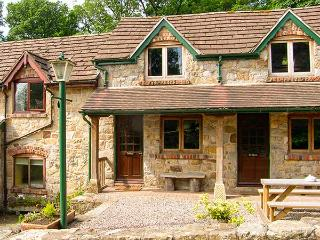 THE BING, WiFi, bike storage, wonderful walks nearby, terrace cottage near Llangollen, Ref. 906209 - Llangollen vacation rentals