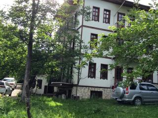 Nice Bed and Breakfast with Internet Access and Wireless Internet - Safranbolu vacation rentals