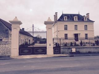 Maisonnette 4-5 personnes à 30 mn du futuroscope - Saint Gervais Les Trois Clochers vacation rentals