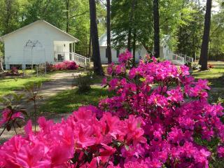 Big Thicket Cottage at Angel Gardens - Kountze vacation rentals