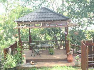3 bedroom House with Deck in Mandeville - Mandeville vacation rentals