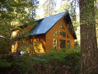 Mt Hood Log Chalet has hot tub & fireplace - Rhododendron vacation rentals
