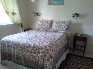 Blue Waters Tropical Beach side Cottage - Fitts vacation rentals