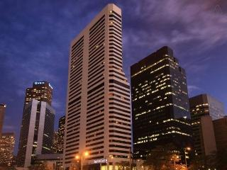 Downtown Atop Ritz Carlton Building Central Lodo - Denver vacation rentals