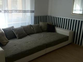 Nice Condo with Internet Access and Central Heating - Bad Homburg vacation rentals