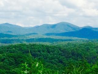 Nov 9-11, Nov 15-20 OPEN $95N Stunning ViewHottub/Game R - Blue Ridge vacation rentals