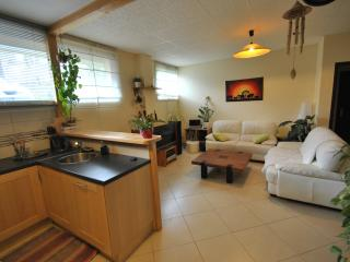 2 bedroom Apartment with Internet Access in Greoux les Bains - Greoux les Bains vacation rentals