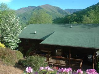 MT. VIEWS, FLAT PAVED PARKING, ATTACHED GARAGE, MESSAGE OWNER FOR PET FEE. - Maggie Valley vacation rentals