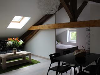 Chambre d'hôtes pour 4 personnes - Domene vacation rentals