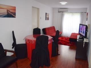 Apartment in Montevideo Uruguay - Montevideo vacation rentals