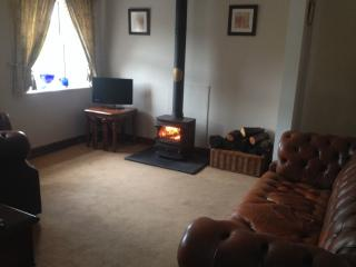 Cozy Cottage with Internet Access and Short Breaks Allowed - Ruthin vacation rentals