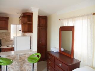 Luxury Studio Apartment Sleeps 2 -  with Seaviews - Santo Domingo vacation rentals