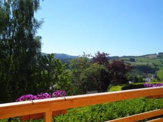 Eco-lodge 3 sapins - Grandris vacation rentals