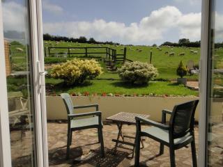 Barn Studio located in Totnes, Devon - Totnes vacation rentals