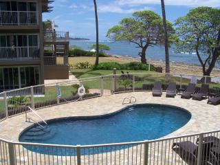 Beautiful New Oceanview Condo-Steps to the Beach - Kapaa vacation rentals