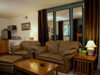 Charming Condo with Deck and Internet Access - Auburn vacation rentals