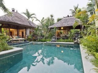 Villa Hibiscus, 3 bedrooms in Sanur - Sanur vacation rentals