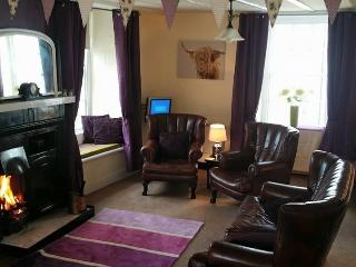 Yorkshire dales, real fire, views, dog friendly ! - Reeth vacation rentals