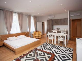 Excellent Apartment in Moscow Centre - Moscow vacation rentals