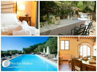 Holiday apartment with shared pool in Radicondoli - Radicondoli vacation rentals