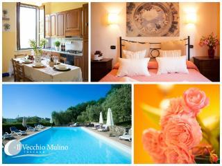 Il Vecchio Mulino Farmhouse - Nespolo - Radicondoli vacation rentals