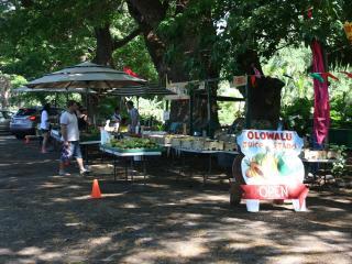 Westin Kaanapali Ocean Resort Villas B - Lahaina vacation rentals