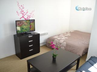 Apartment/Flat in Lille, at Vivien's place - Lille vacation rentals